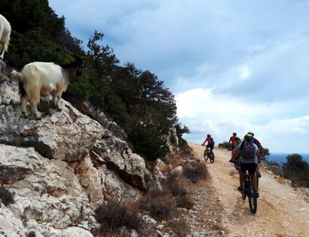 Tour-EBike-Sardegna-4
